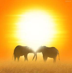 incredible_africa_photos_640_high_06