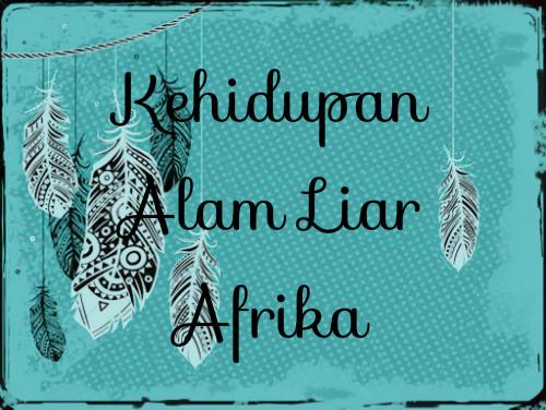 Kehidupan Alam Liar Afrika